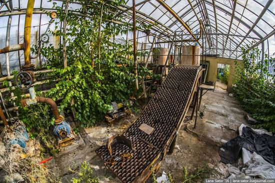 Abandoned greenhouse complex near Moscow, Russia, photo 9