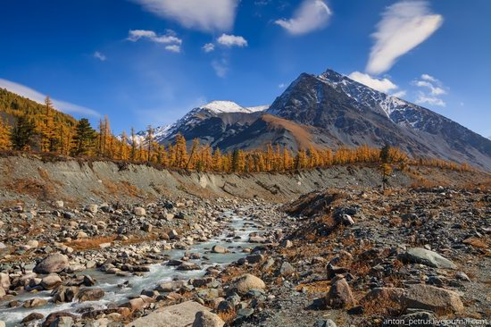 Golden autumn in the Altai Mountains, Russia, photo 1