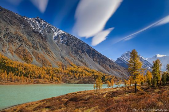 Golden autumn in the Altai Mountains, Russia, photo 4