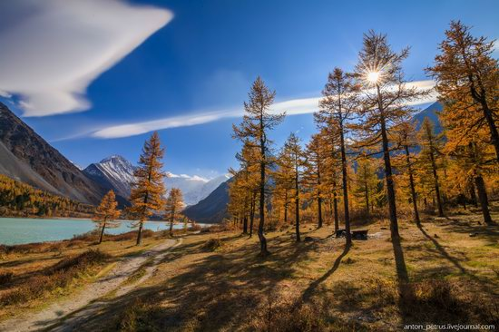 Golden autumn in the Altai Mountains, Russia, photo 5