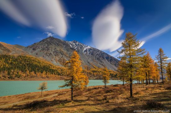 Golden autumn in the Altai Mountains, Russia, photo 7