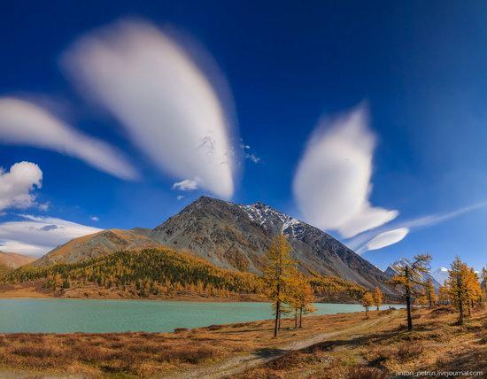 Golden autumn in the Altai Mountains, Russia, photo 8