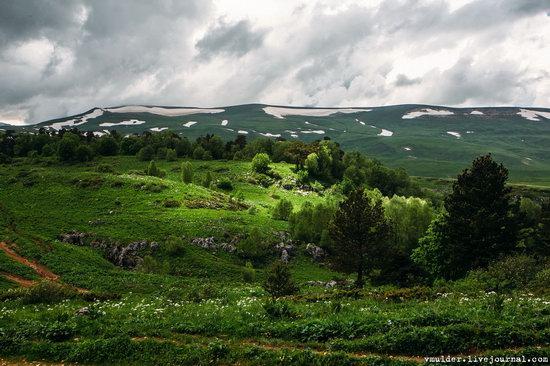 Alpine Meadows, Lago-Naki Plateau, Russia, photo 1