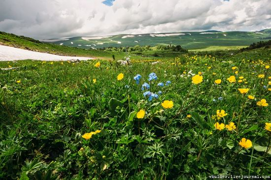 Alpine Meadows, Lago-Naki Plateau, Russia, photo 10