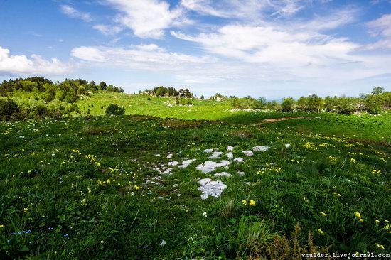 Alpine Meadows, Lago-Naki Plateau, Russia, photo 16