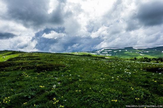 Alpine Meadows, Lago-Naki Plateau, Russia, photo 17