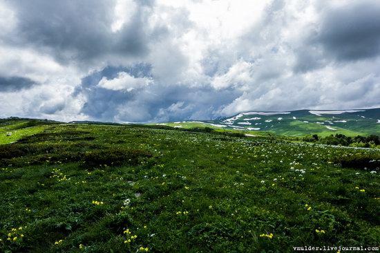 Alpine Meadows, Lago-Naki Plateau, Russia, photo 17