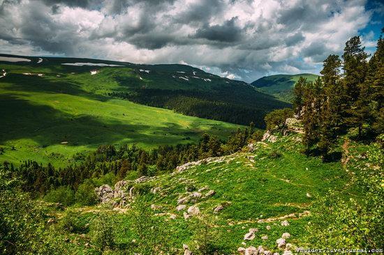 Alpine Meadows, Lago-Naki Plateau, Russia, photo 4