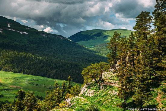 Alpine Meadows, Lago-Naki Plateau, Russia, photo 5