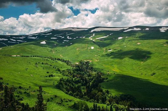 Alpine Meadows, Lago-Naki Plateau, Russia, photo 6