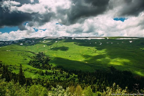 Alpine Meadows, Lago-Naki Plateau, Russia, photo 7