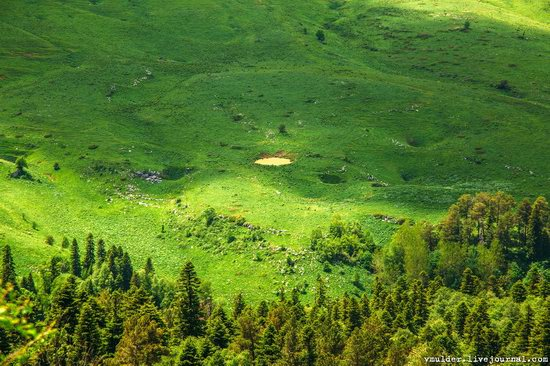 Alpine Meadows, Lago-Naki Plateau, Russia, photo 8