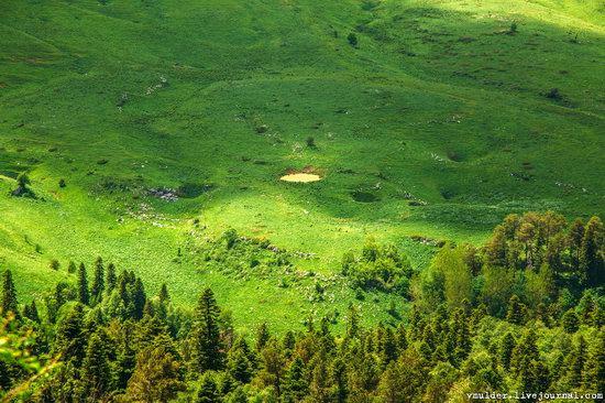Alpine Meadows, Lago-Naki Plateau, Russia, photo 8
