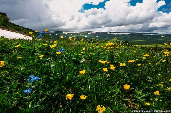 Alpine Meadows, Lago-Naki Plateau, Russia, photo 9
