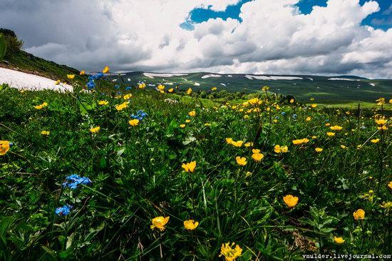 Alpine Meadows, Lago-Naki Plateau, Russia, photo 9