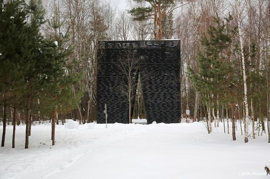Winter in the Art Park Nikola-Lenivets, Russia, photo 19