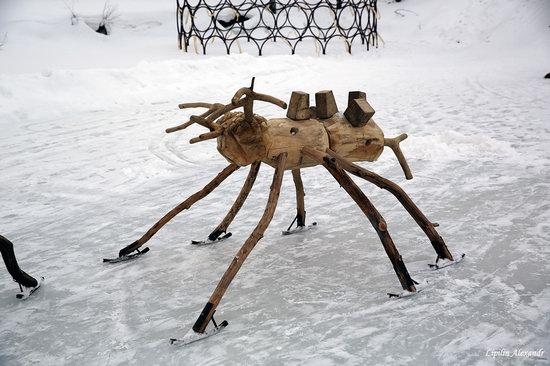 Winter in the Art Park Nikola-Lenivets, Russia, photo 23