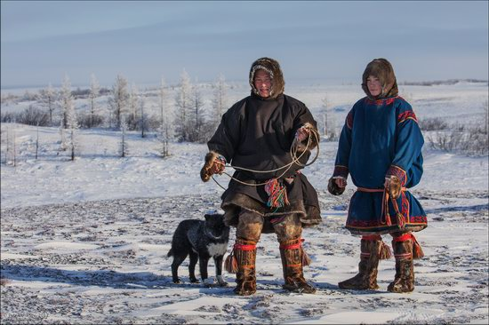 Life of the Nenets Reindeer Herders in the Russian North, photo 10