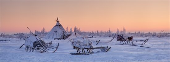 Life of the Nenets Reindeer Herders in the Russian North, photo 18