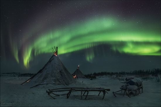 Life of the Nenets Reindeer Herders in the Russian North, photo 5