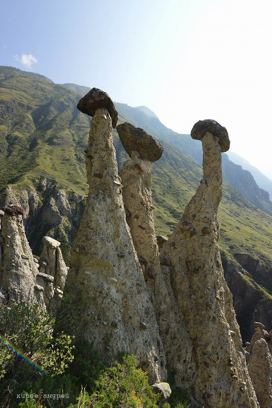 Stone mushrooms of Akkurum, Altai Republic, Russia, photo 10