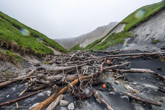 Amazing nature of Iturup Island, Russia, photo 18