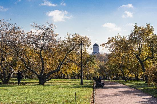Golden autumn in Kolomenskoye, Moscow, Russia, photo 1