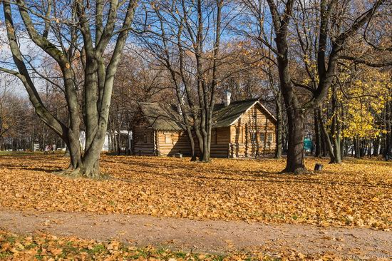 Golden autumn in Kolomenskoye, Moscow, Russia, photo 12