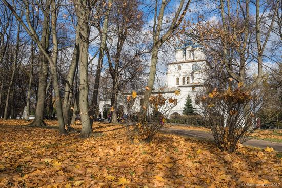Golden autumn in Kolomenskoye, Moscow, Russia, photo 16