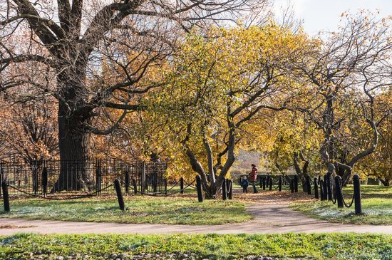 Golden autumn in Kolomenskoye, Moscow, Russia, photo 6