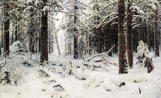 Photorealistic paintings of Ivan Shishkin, picture 9