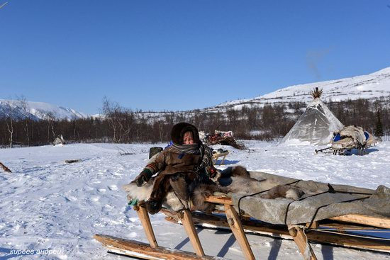 Nenets Reindeer Herders of Yamal, Russia, photo 10