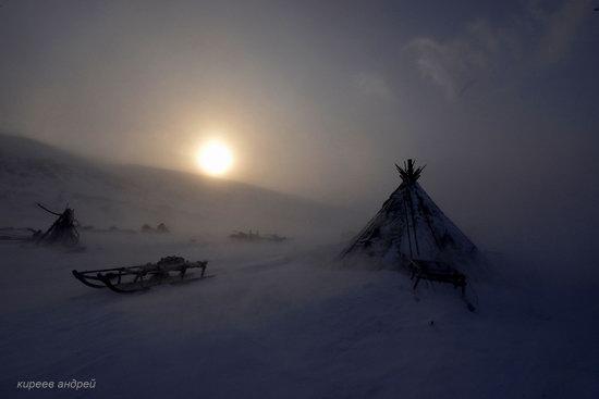 Nenets Reindeer Herders of Yamal, Russia, photo 11