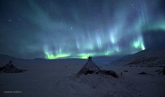 Nenets Reindeer Herders of Yamal, Russia, photo 20