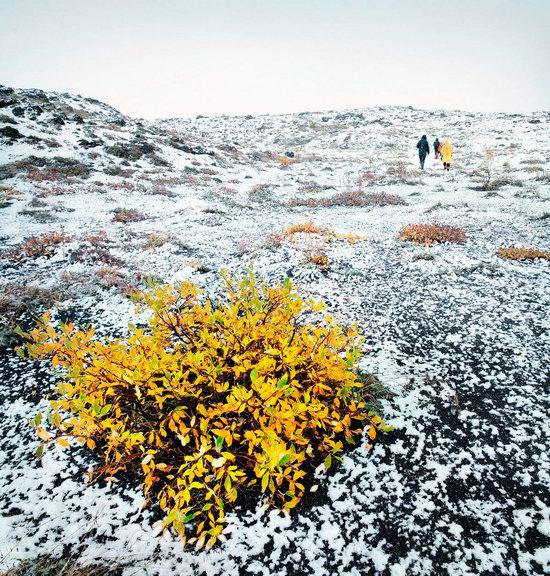 Amazing Landscapes of Kamchatka, Russia, photo 15