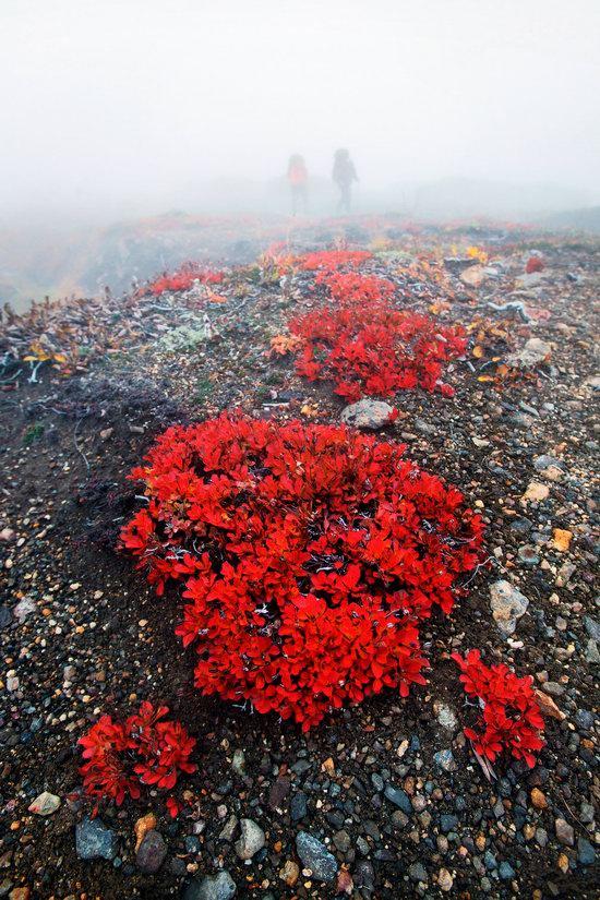 Amazing Landscapes of Kamchatka, Russia, photo 8