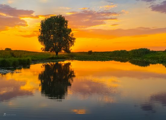 Summer sunset in the Volga River delta, Astrakhan Oblast, Russia, photo 1