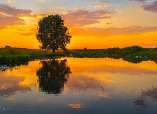 Summer sunset in the Volga River delta, Astrakhan Oblast, Russia, photo 1