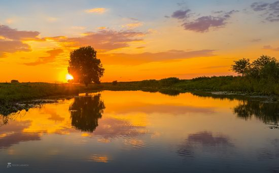 Summer sunset in the Volga River delta, Astrakhan Oblast, Russia, photo 3