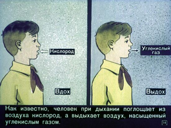 Soviet Filmstrip for Kids about Nuclear War Shelters in 1970, picture 14