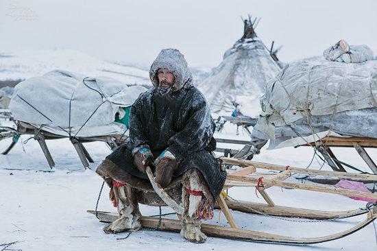 Life of Reindeer Herders of the Polar Urals, Russia, photo 11