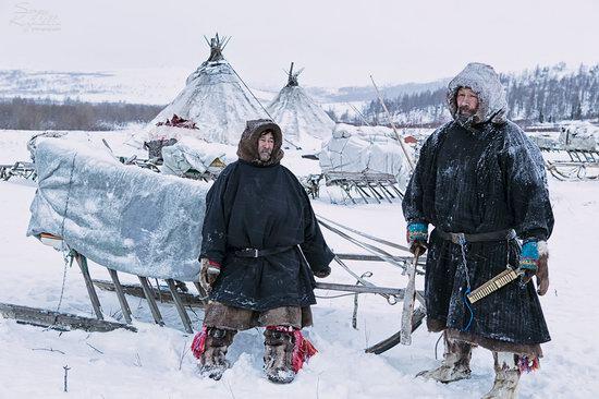 Life of Reindeer Herders of the Polar Urals, Russia, photo 12