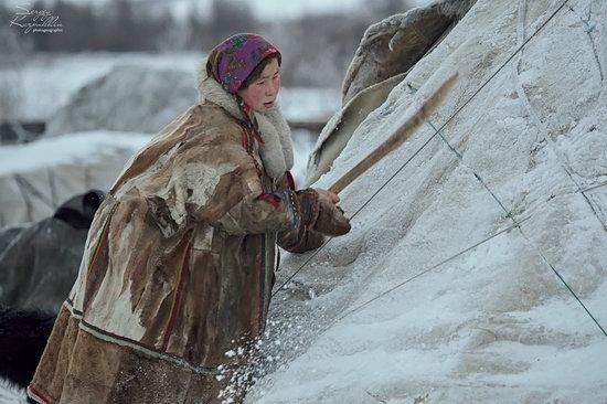 Life of Reindeer Herders of the Polar Urals, Russia, photo 13