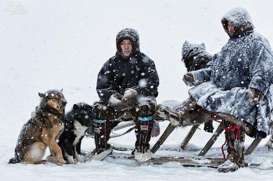Life of Reindeer Herders of the Polar Urals, Russia, photo 18