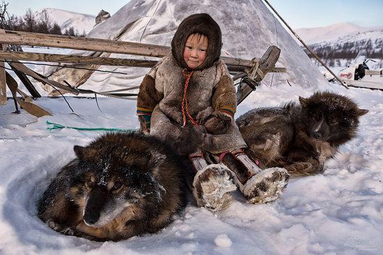 Life of Reindeer Herders of the Polar Urals, Russia, photo 25
