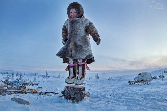 Life of Reindeer Herders of the Polar Urals, Russia, photo 26