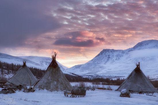 Life of Reindeer Herders of the Polar Urals, Russia, photo 28