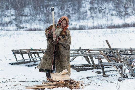 Life of Reindeer Herders of the Polar Urals, Russia, photo 6