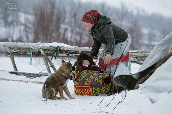Life of Reindeer Herders of the Polar Urals, Russia, photo 7