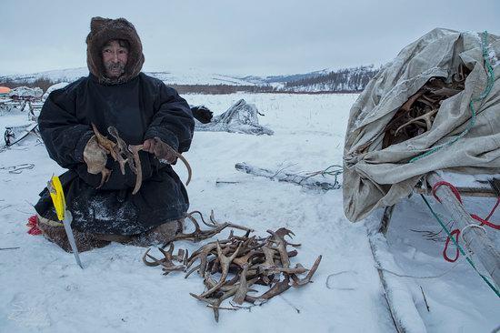 Life of Reindeer Herders of the Polar Urals, Russia, photo 9